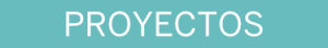 vye-titulo-proyectos-450