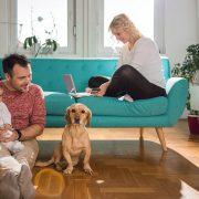 ¿Cómo decoran sus casas las parejas jóvenes?